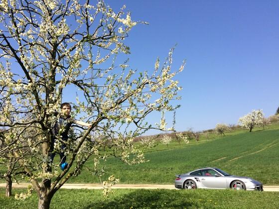 Schwäbischer Frühling