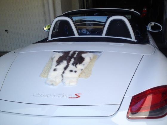 Hasen Wasen Porsche, am liebsten hätte ich den ganzen Deckel mit einem Kuhfell abgedeckt.........................Grins