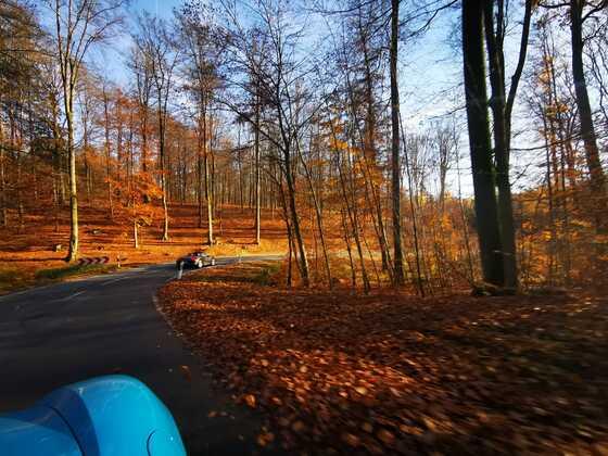 November 2020 spontane Ausfahrt durch den Spessart